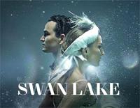 天鵝湖-Swan Lake