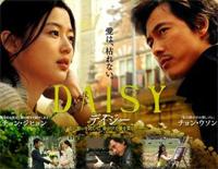 雛菊-Daisy