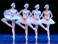 Dance of the Little Swans-Danse des petits cygnes