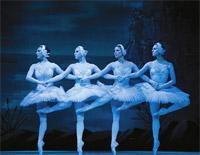 四羽の白鳥たちの踊り