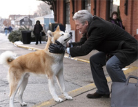 Goodbye - Hachi: A Dog's Tale
