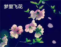 Flying Flowers In the Dream