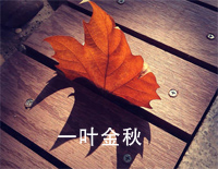 A Leaf of Autumn