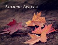 Autumn Leaves-Ed Sheeran