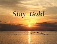 Stay Gold-宇多田ヒカル