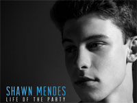Life of the Party-Shawn Mendes