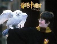 Hedwig's Theme-ハリー・ポッターと賢者の石