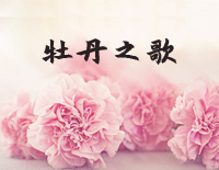 Song of Peony-Red Peony Theme-Jiang Dawei