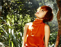 Forest of Flowers-Joey Yung