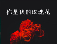 You are My Rose-Pang Long