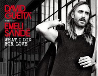 What I Did for Love-David Guetta