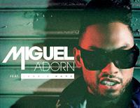 Adorn-Miguel
