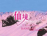 Wonderland-Bandari