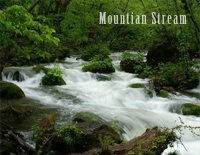 Mountain Stream-Bandari