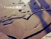 Feelings-Richard Clayderman