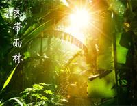 Tropical Rain Forest-S.H.E