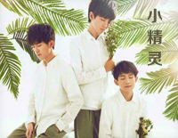 The Little Elf-TFBOYS