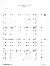 Supermarket Flowers-Ed Sheeran-Numbered-Musical-Notation-Preview-1