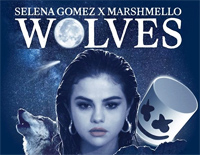 Wolves-Selena Gomez and Marshmello