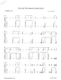 You Are The Reason-Calum Scott-Numbered-Musical-Notation-Preview-1