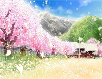 Sakurairo Sakura Kaze