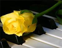 Minuet 7-Johann Sebastian Bach