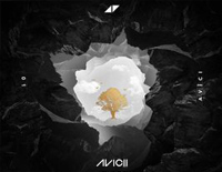 Friend Of Mine-Avicii