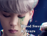 Blood Sweat & Tears-BTS