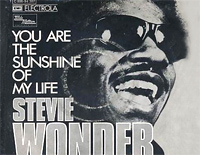 You Are The Sunshine Of My Life-Stevie Wonder