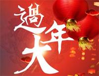 Celebrate The Spring Festival
