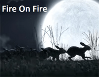 Fire on Fire-Watership Down Theme