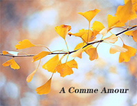 A Comme Amour-Easy Version