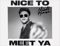 Nice to Meet Ya-Niall Horan