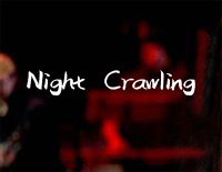 Night Crawling-Miley Cyrus ft Billy Idol