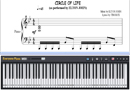Piano Tutorial for Circle of Life - The Lion King OP