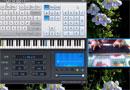 Serenade Deletoile, Everyone Piano Show
